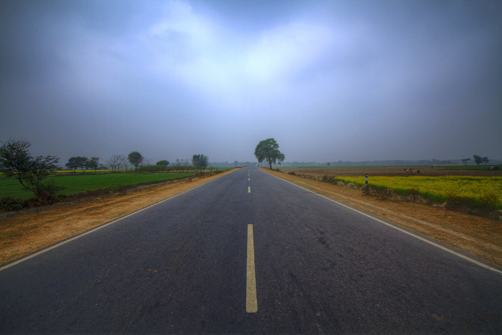 Photograph Road of Bihar state by Amar Kumar on 500px