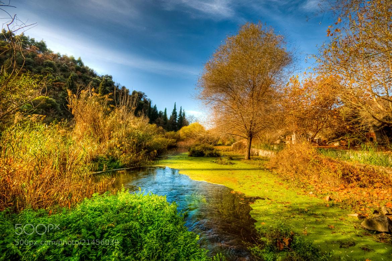 Photograph Autumn Colours by Nejdet Duzen on 500px