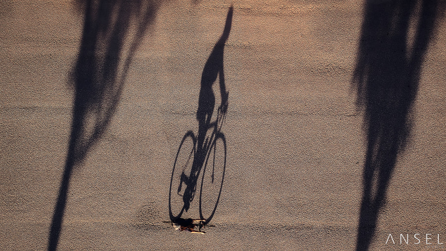 The Cyclist by Jonathan Danker on 500px.com