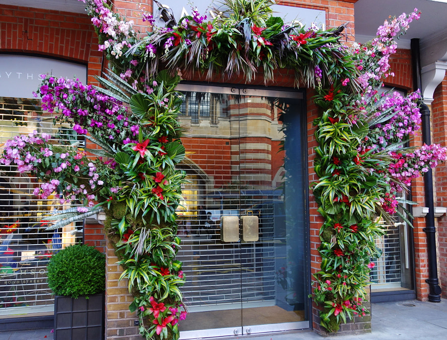 Chelsea in Bloom, London by Sandra on 500px.com