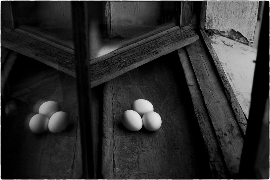 """Life on my windowsill"" (Half a dozen), автор — Key GROSS (Konstantin Smirnov) на 500px.com"