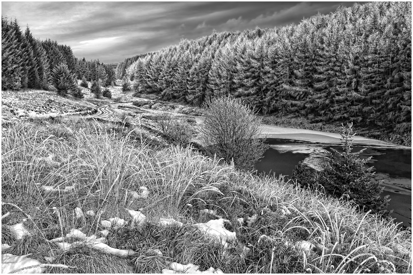 Photograph Carno Frost Mono by Alan Coles on 500px
