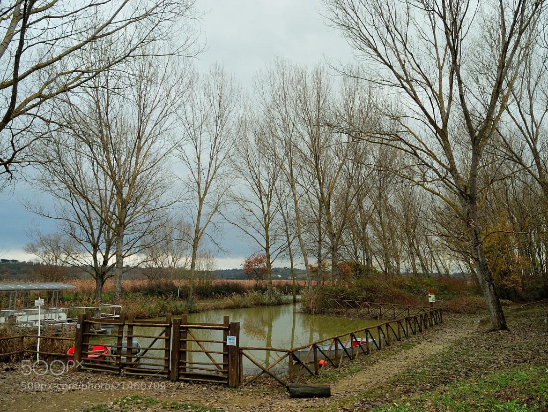 Photograph Lake of Montepulciano.  by Renato Pantini on 500px