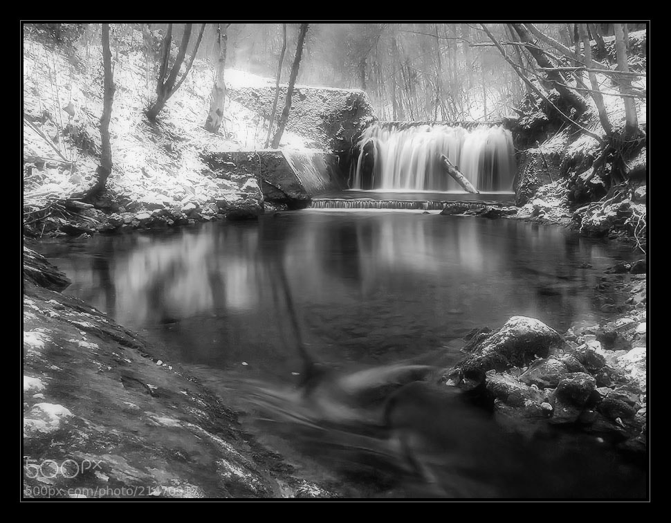 Photograph winter in black and white by Vlado Pirša on 500px