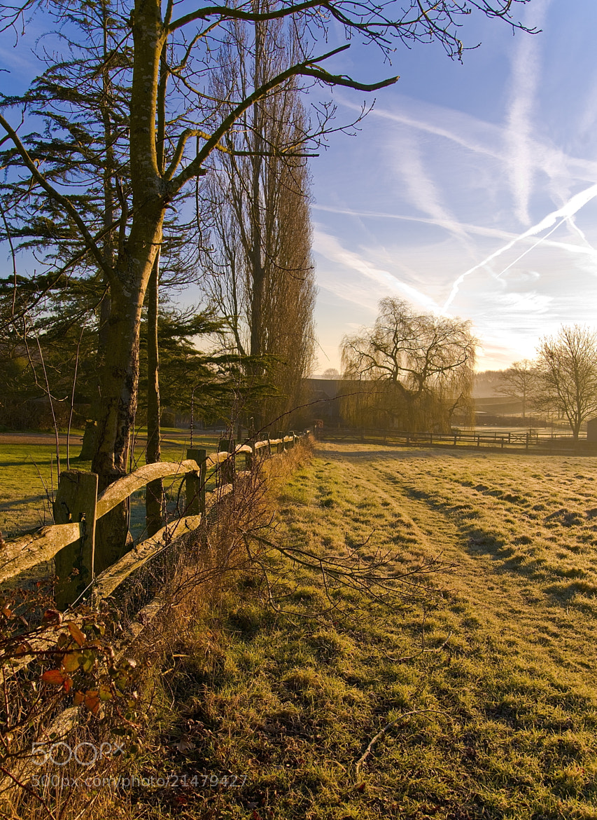 Photograph  A morning walk in Kent by Kol Tregaskes on 500px