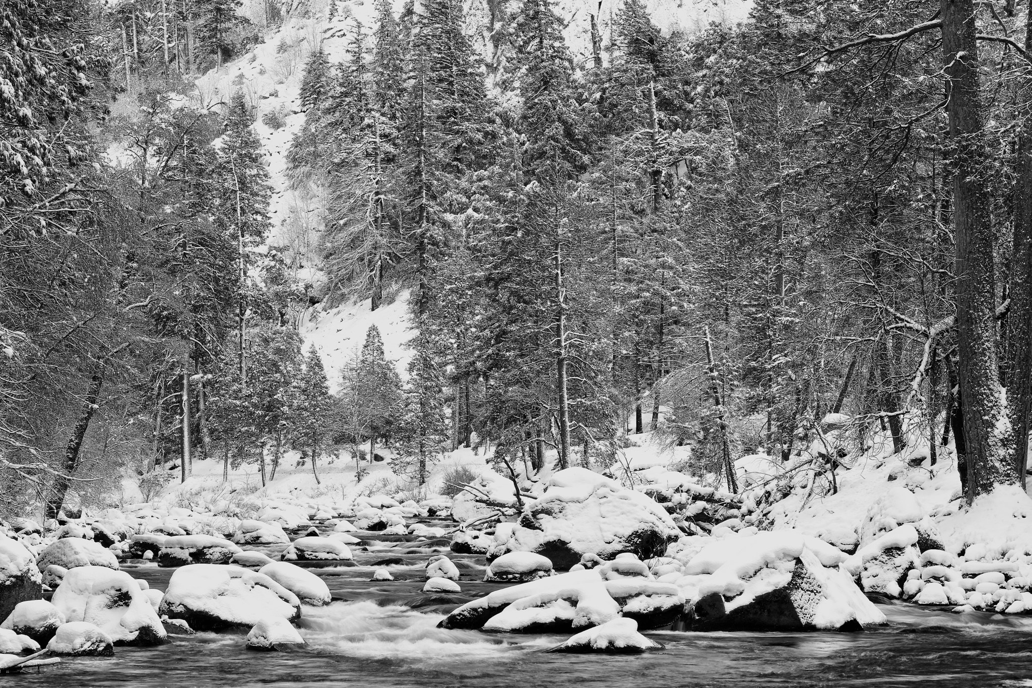 Photograph Merced River by Joe Dineen on 500px