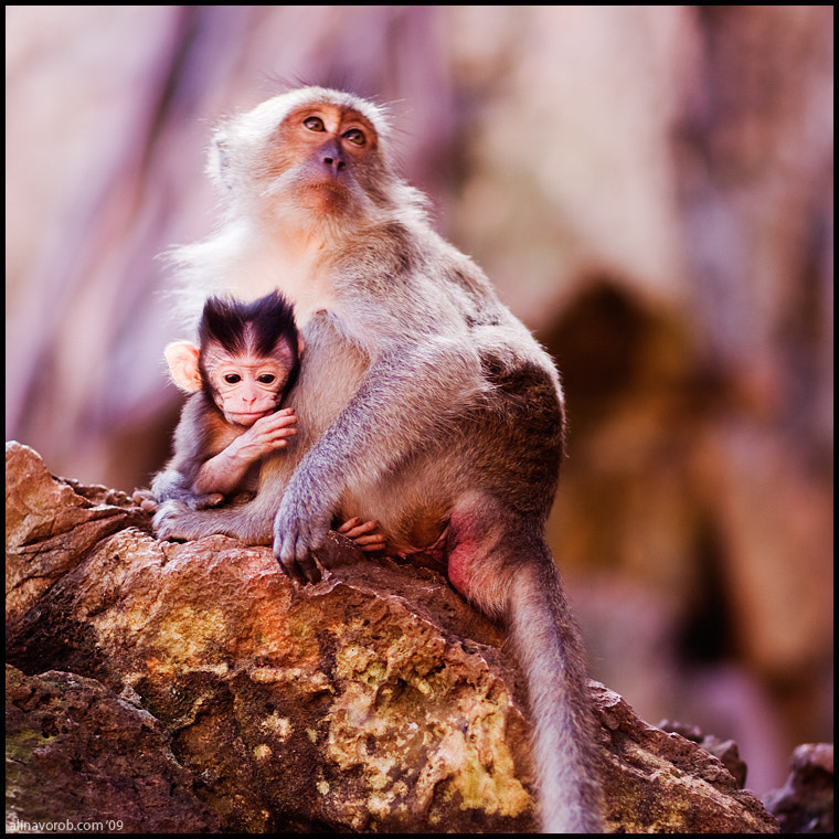 Photograph Single Mother by Alina Vorob on 500px