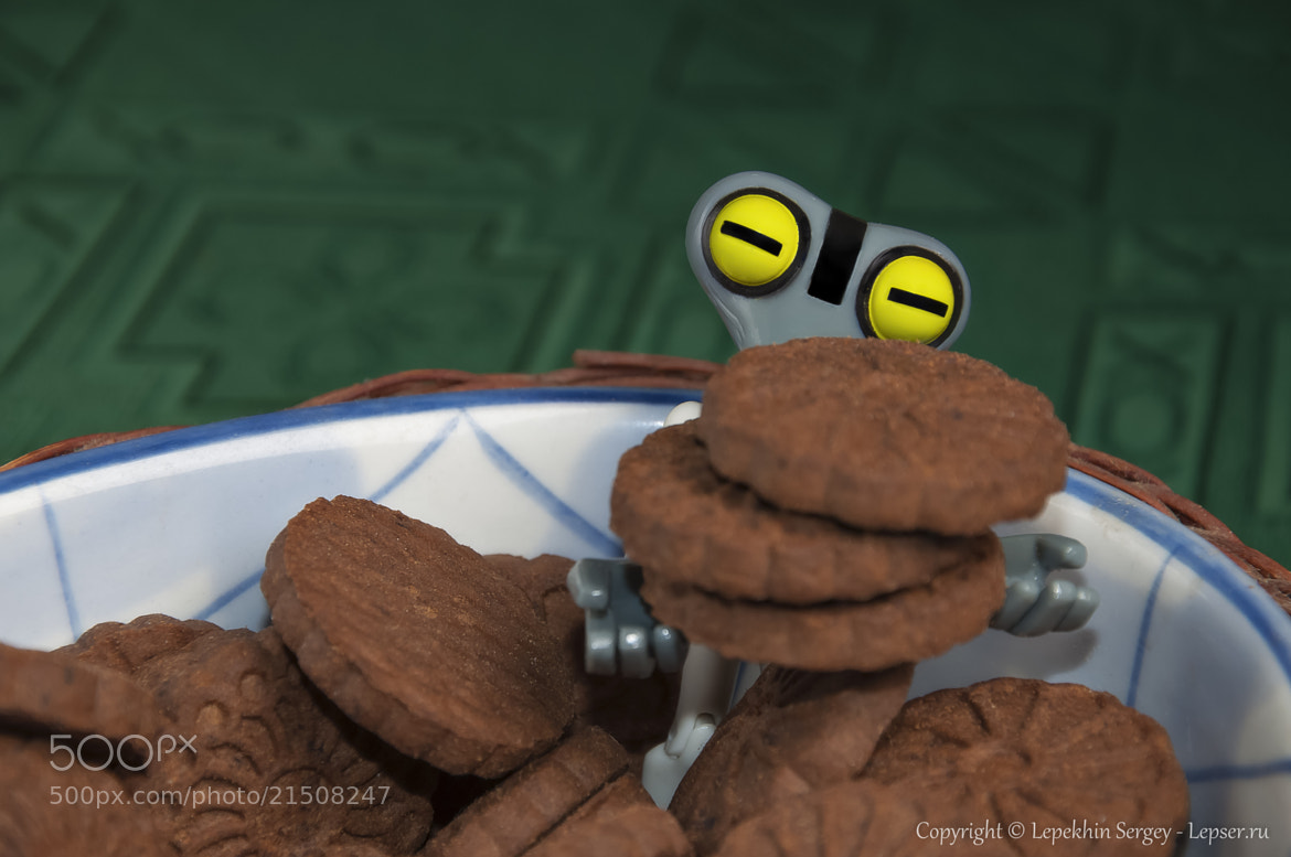 Photograph Want a cookie? by Сергей Лепехин on 500px