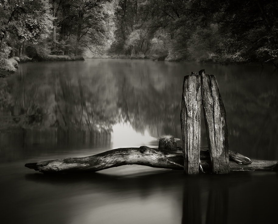 Photograph in the River  by Jaromir Hron on 500px