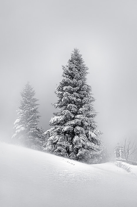 Photograph Fifteen Feet of Pure White Snow by Mary Kay on 500px