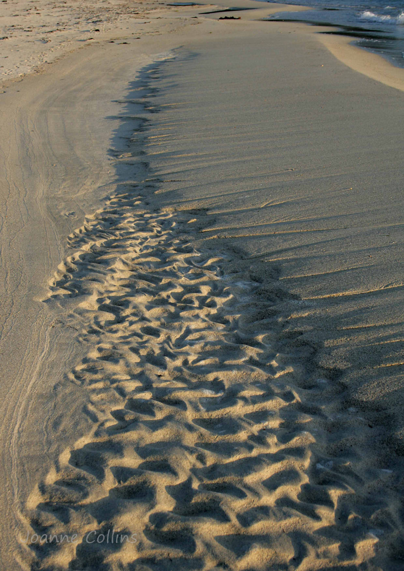 Photograph Sand patterns by Jo  Collins on 500px