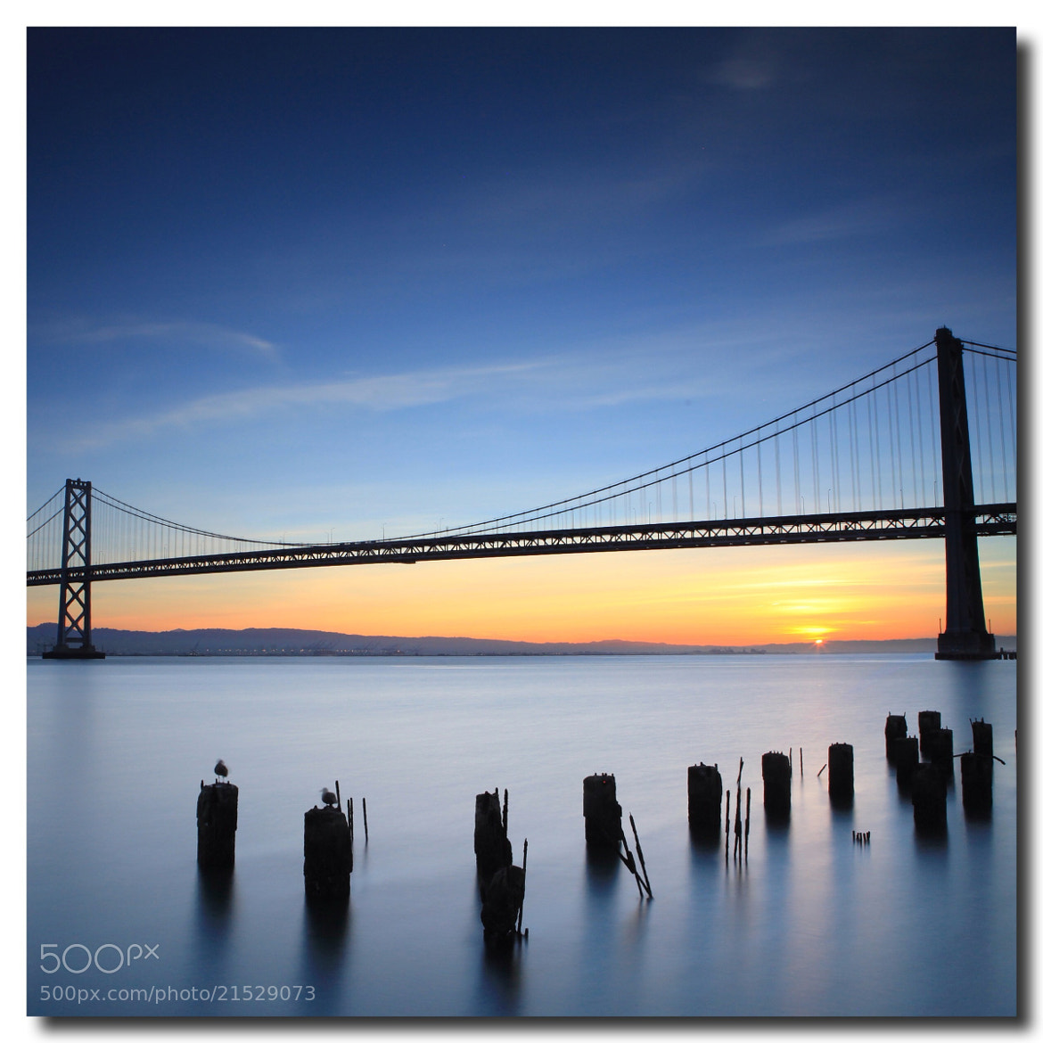Photograph Bay Bridge by Photography Hobbyist on 500px