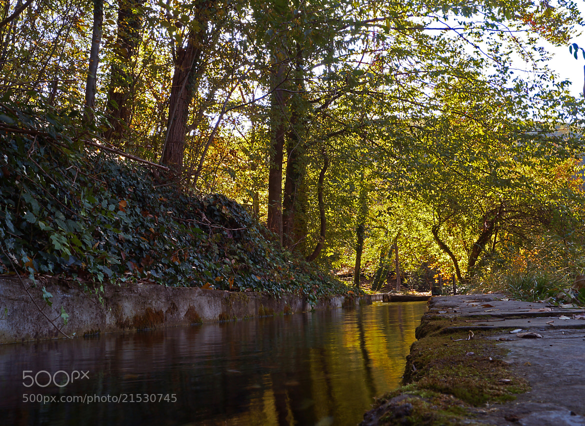 Photograph Stream by Krasimir Hintolarski on 500px