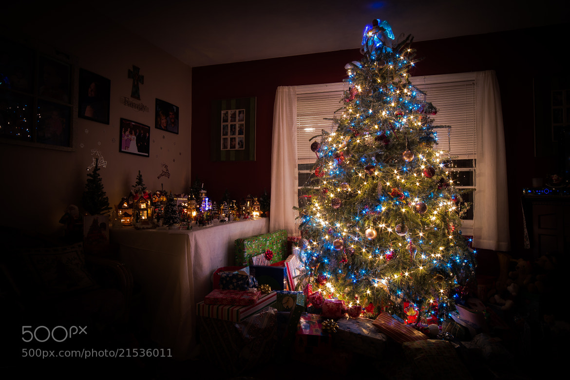 Photograph Merry Christmas Tree! by David Swan on 500px