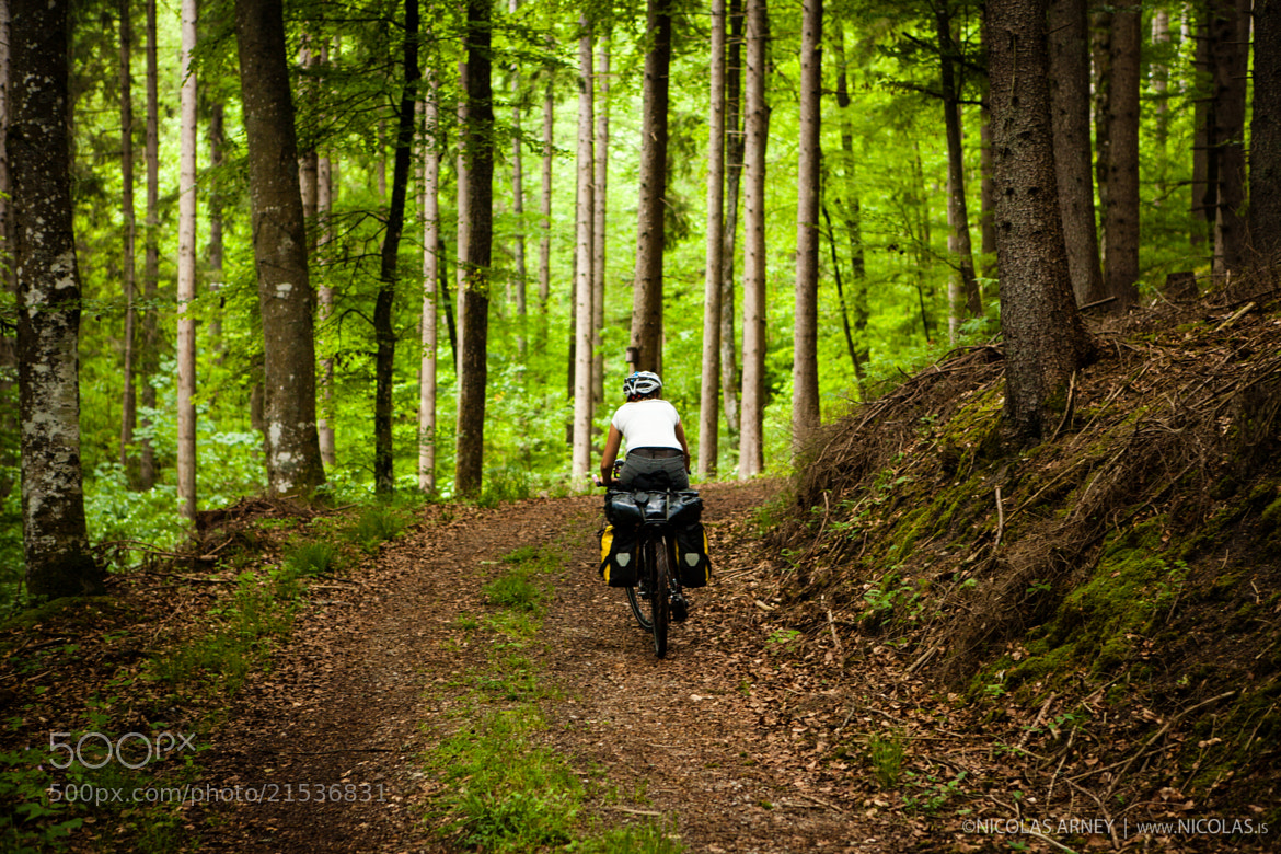 Photograph Ride into the Black Forest by Nicolas Arney on 500px