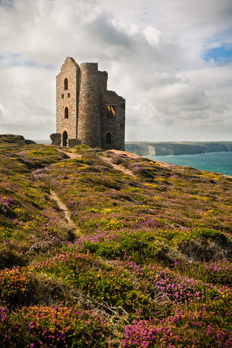 Photograph Tin mines with heather by Al Power on 500px