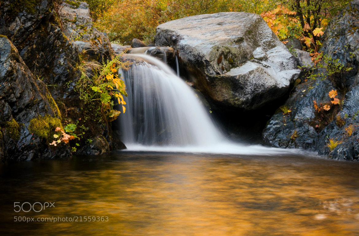 Photograph Heart of Gold (Brand Creek) by Eric Leslie on 500px