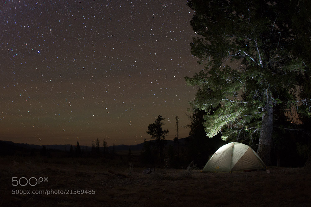Photograph Under the Stars by Austin Holt on 500px
