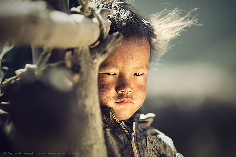 Wind-hardened by Anton Jankovoy on 500px.com