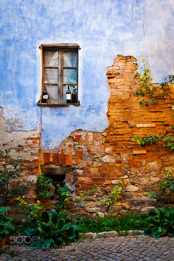 Photograph Italy – Monforte d'Alba by Fabrizio Fenoglio on 500px