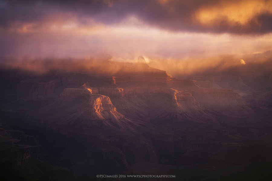 Metamorphosis by Peter Coskun Nature Photography on 500px.com