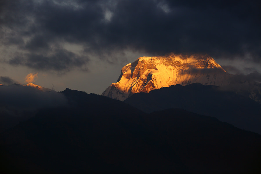 Photograph Golden light on Annapurna South by Christian Rey on 500px