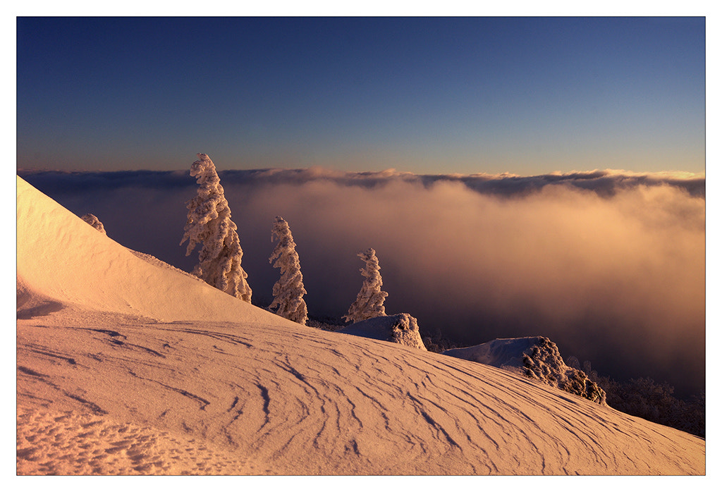 Photograph Frozen by Sylvain Sester on 500px