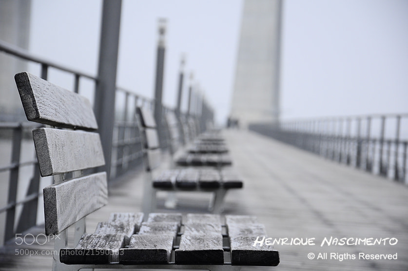 Photograph Alone.... by Henrique Nascimento on 500px