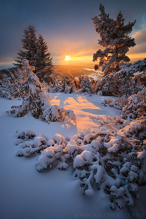 Photograph Instant of Light by Maxime Courty on 500px