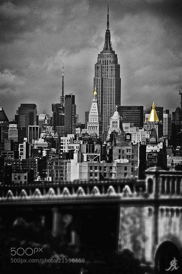 http://www.flickr.com/photos/alessandro_giorgi