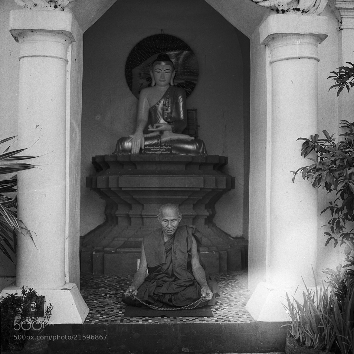 Photograph monk, shwedagon zedi daw by  momofuku on 500px