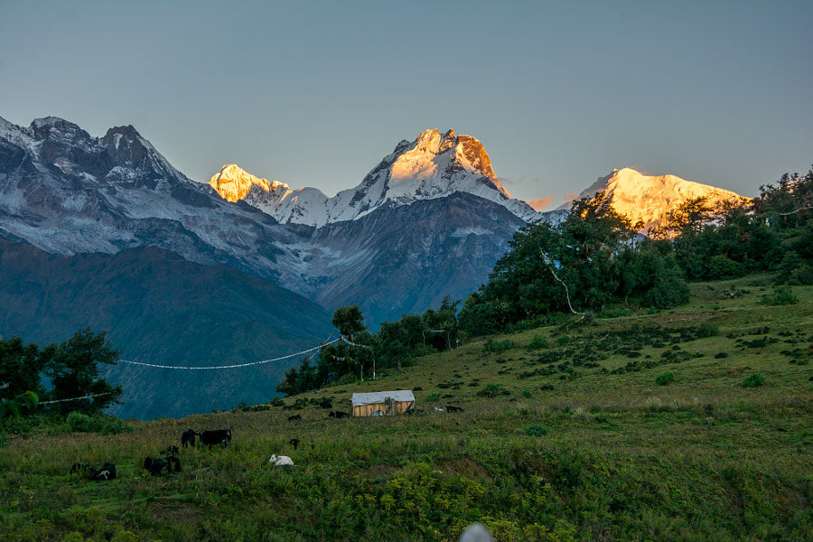 Ganesh Himal sunrise by Sahil Guraya on 500px.com