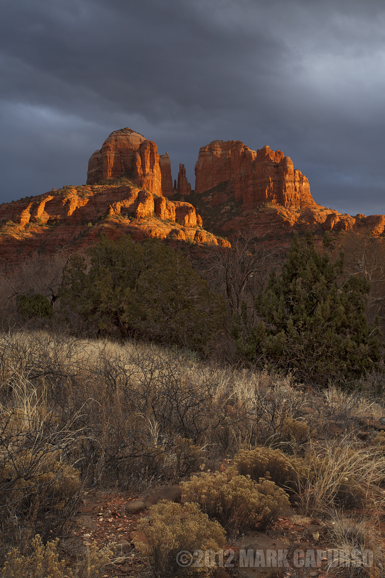 Photograph Cathedral in the Spotlite by Mark Capurso on 500px