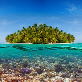 Coral reef and the Island by Novikov Sergey on 500px.com