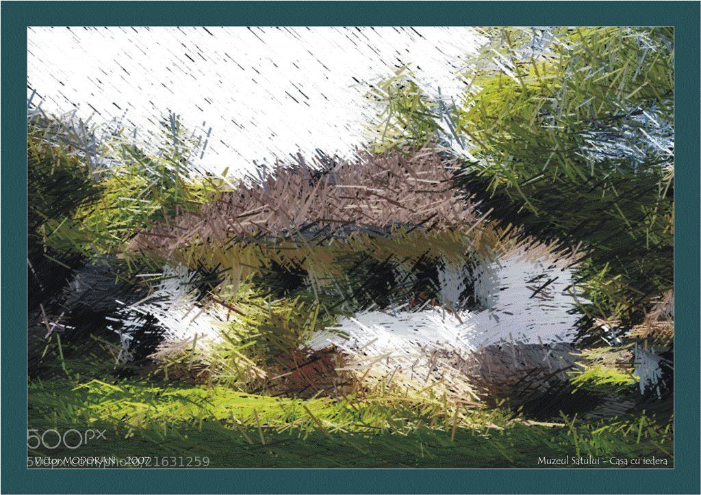 Photograph Casa cu iedera - Muzeul Satului by Victor Modoran on 500px