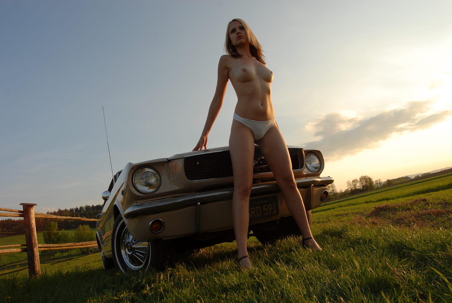 Nude Girls And Mustangs