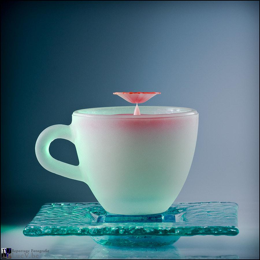 Red milk #4