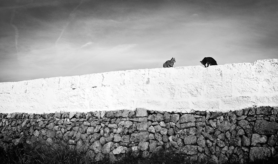 Photograph the wall keepers by xavi cardell on 500px