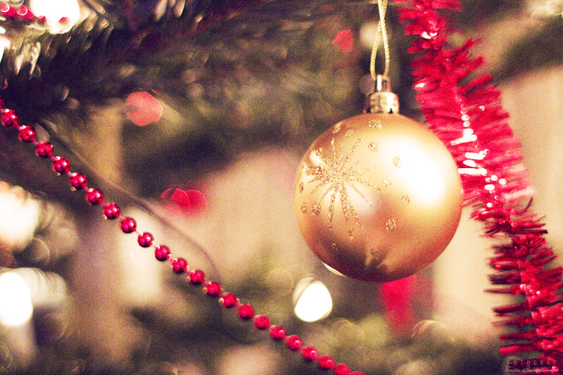 Photograph Oh holy Christmas by Frida Bringslimark on 500px
