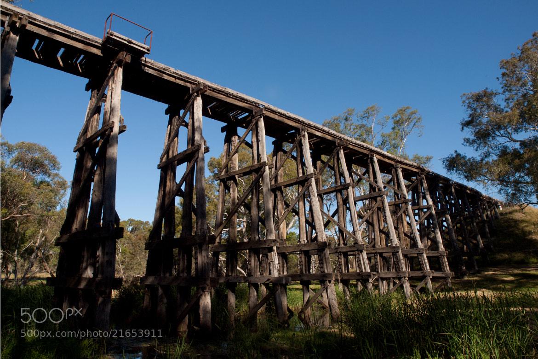 Photograph Trestle Bridge - Pyalong by John Sharp on 500px