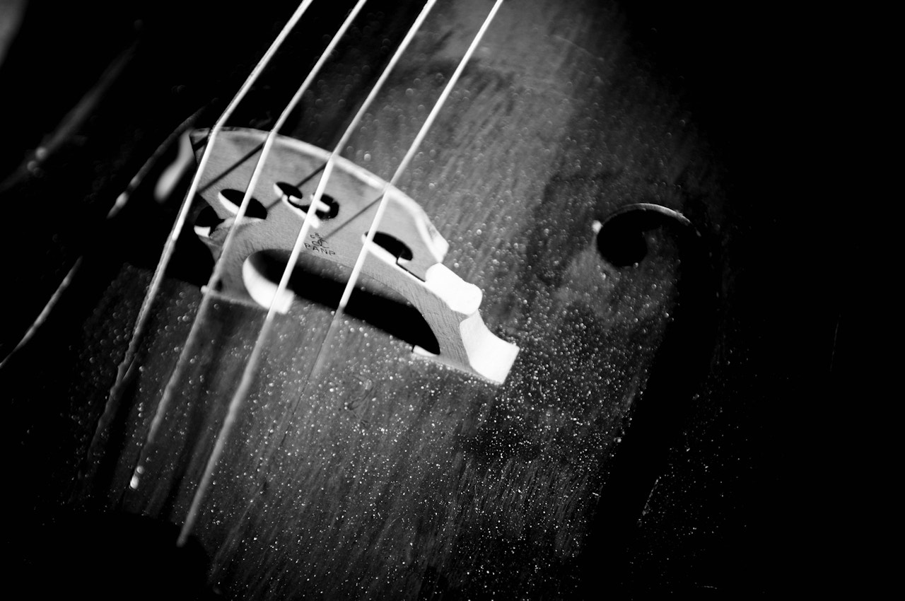 Photograph Cello by Joe Hanning on 500px