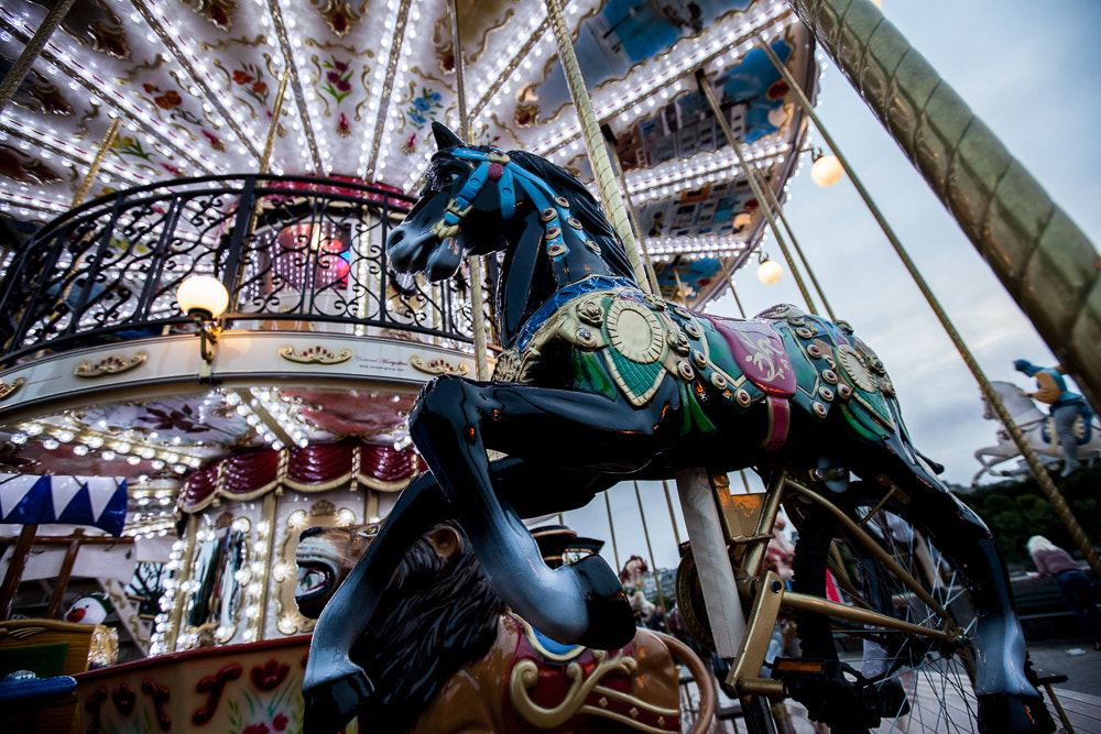 Photograph Carousel by Chris Robins on 500px