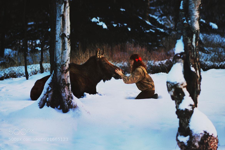 Photograph encounters by Lauren Parker on 500px
