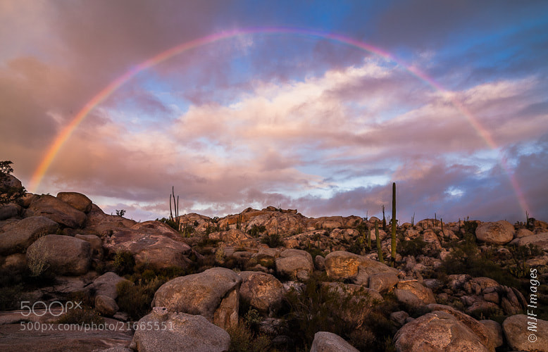 Photograph Desert Rainbow by Michael Flaherty on 500px