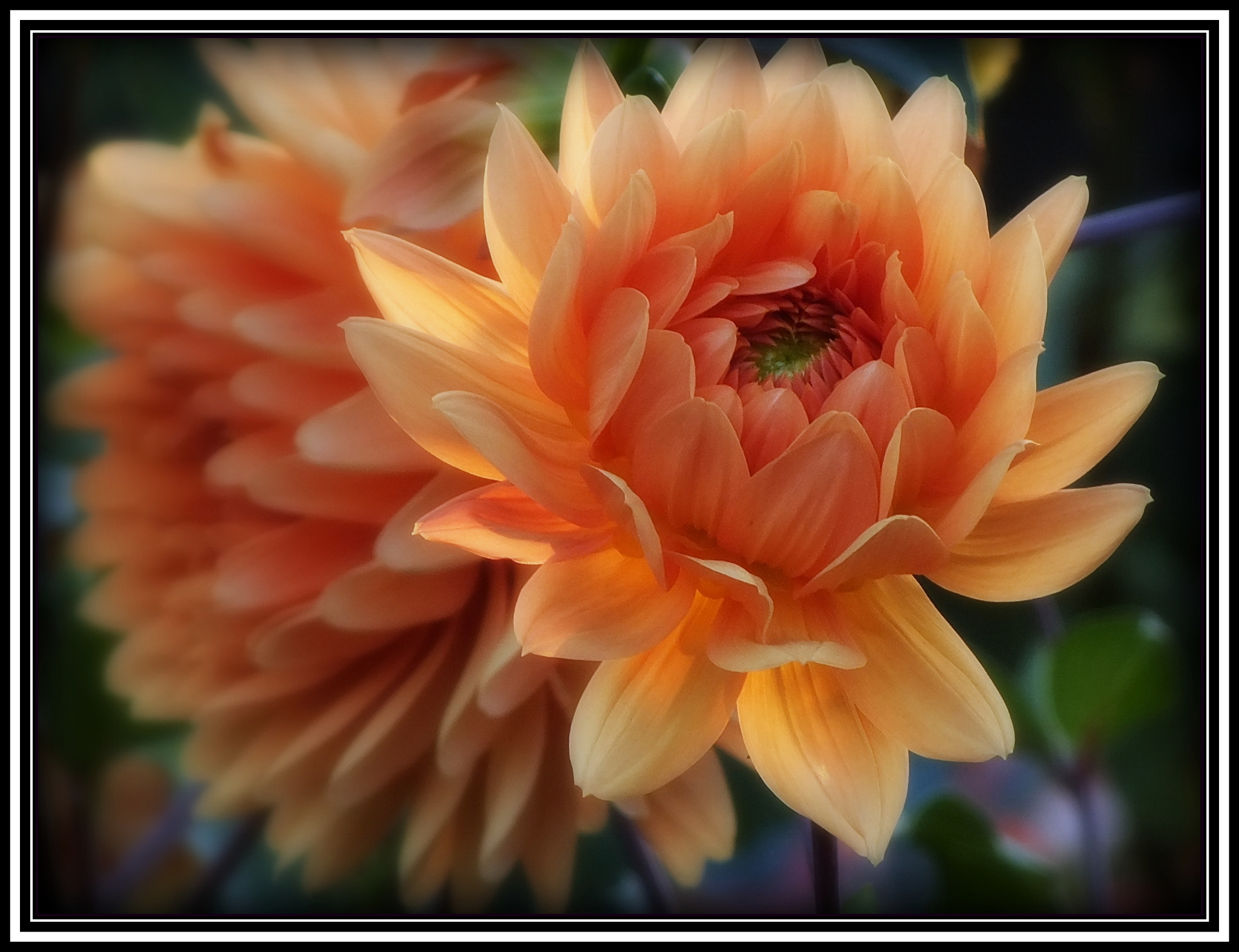 Photograph Summer Remembered by H. Becker on 500px