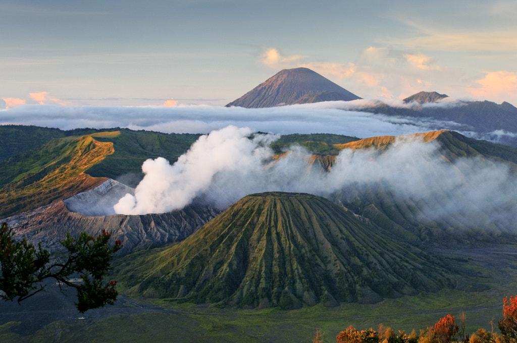 Photograph Mount Bromo by Lionel Lee on 500px