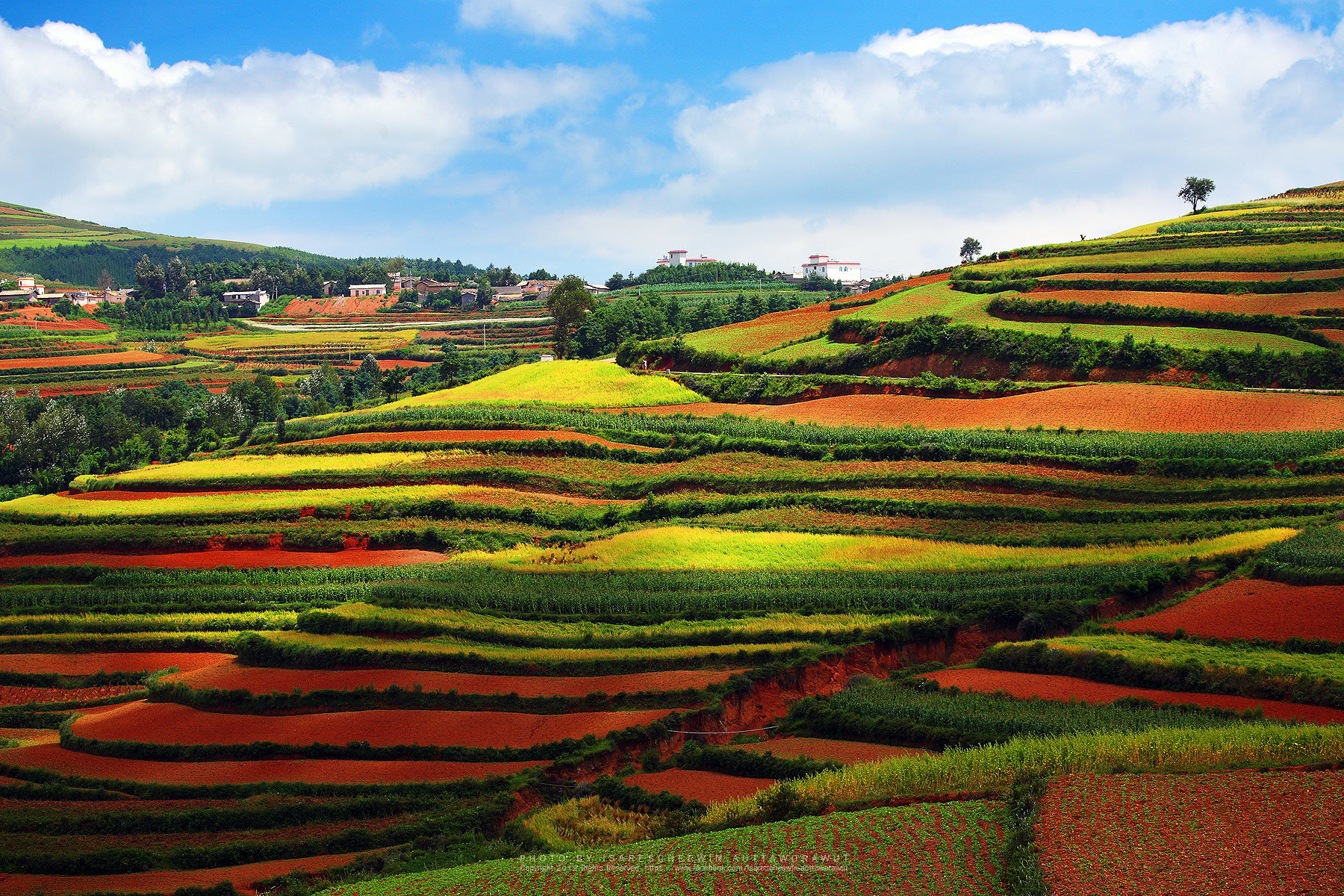 Photograph Red farmland with village,dongchuan,china by isarescheewin auttaworawut on 500px