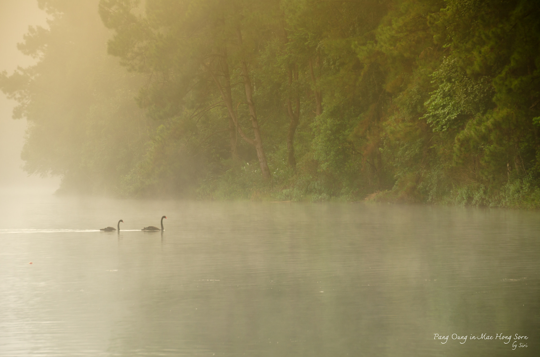 Photograph Pang Oung in Mae Hong Sorn by Sirinun Kaewchampa on 500px