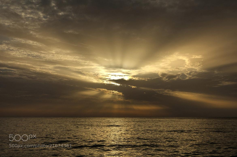Photograph Heavenly Lights by Béla Török on 500px