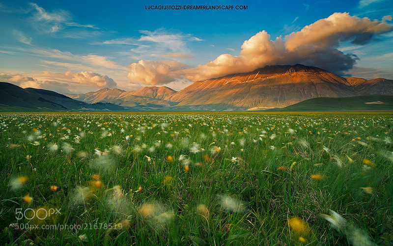 Photograph Land of whispering wind by Dreamerlandscape.com  on 500px